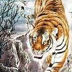tiger2SM